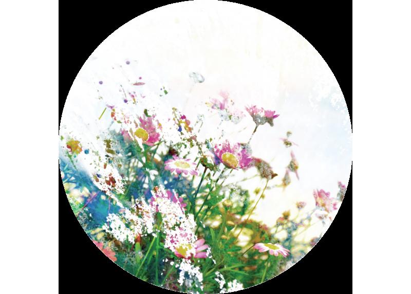 Divoké květiny, AG Design, fototapeta ekologická vliesová do obývacího pokoje, ložnice, jídelny, kuchyně, 140x140
