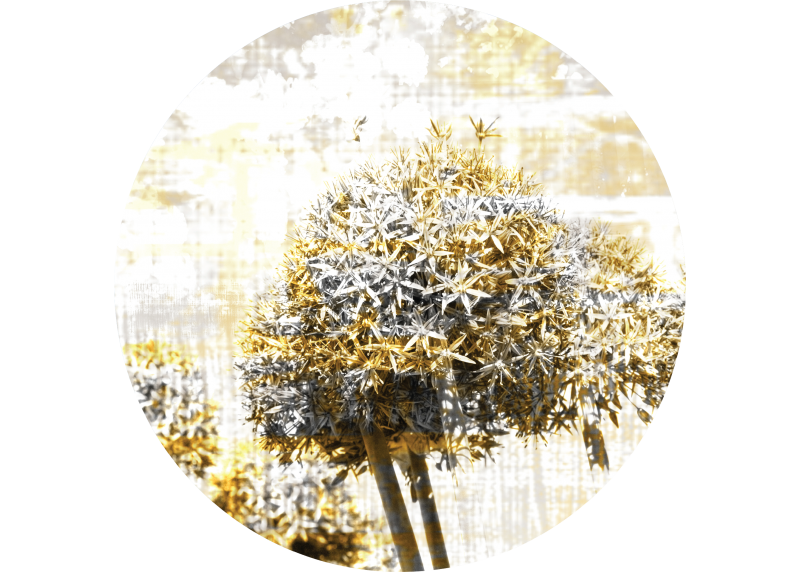 Abstrakce květiny, AG Design, fototapeta ekologická vliesová do obývacího pokoje, ložnice, jídelny, kuchyně, 140x140