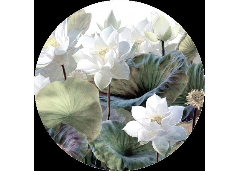 Bílé lotosy, AG Design, fototapeta ekologická vliesová do obývacího pokoje, ložnice, jídelny, kuchyně, 140x140