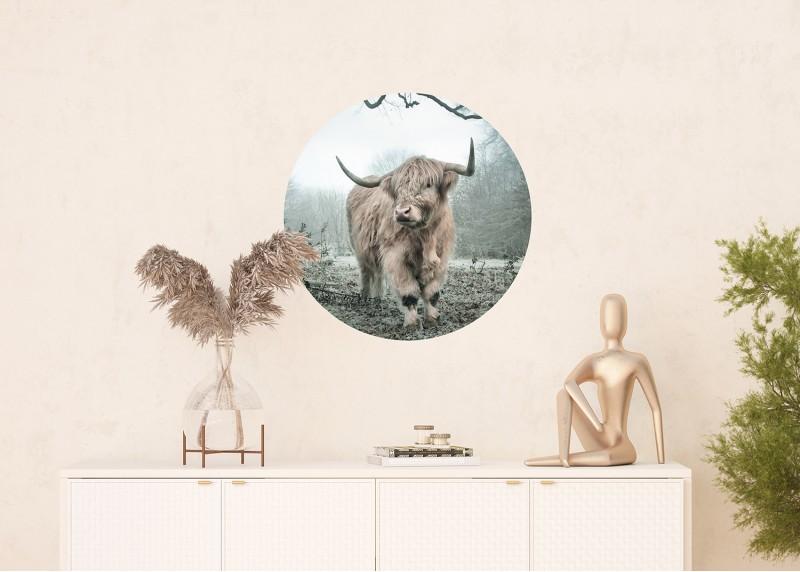 Horal, AG Design, fototapeta ekologická vliesová do obývacího pokoje, ložnice, jídelny, kuchyně, 70x70