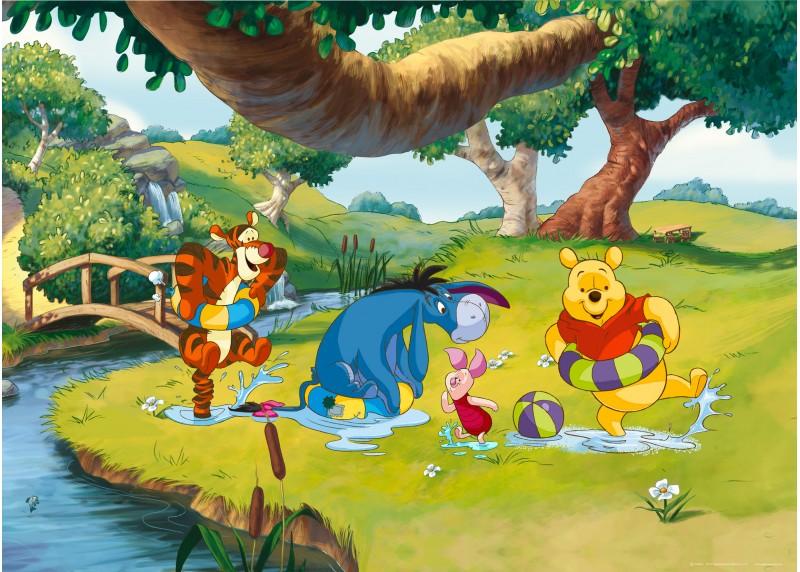 Medvídek Pú na břehu řeky, Disney, vliesová fototapeta pro dětský pokoj, 160 x 110 cm, FTDN M 5215