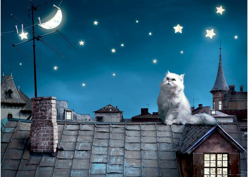 Kočka na střeše, AG Design, fototapeta ekologická vliesová do obývacího pokoje, ložnice, jídelny, kuchyně, lepidlo součástí balení, 160x110