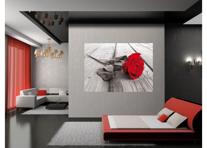 Červená růže, AG Design, fototapeta ekologická vliesová do obývacího pokoje, ložnice, jídelny, kuchyně, lepidlo součástí balení, 160x110