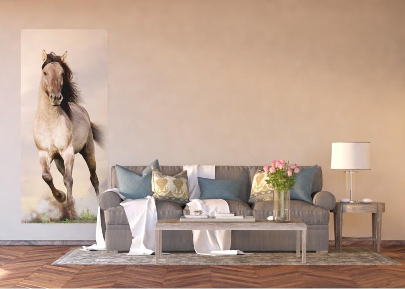 Cválající kůň, AG Design, fototapeta ekologická vliesová do obývacího pokoje, ložnice, jídelny, kuchyně, lepidlo součástí balení, 90x202