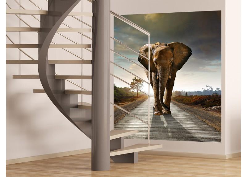 Slon na silnici, vliesová fototapeta do obývacího pokoje, ložnice, jídelny, kuchyně či chaty, AG Design, 180 x 202 cm, FTN XXL 2514