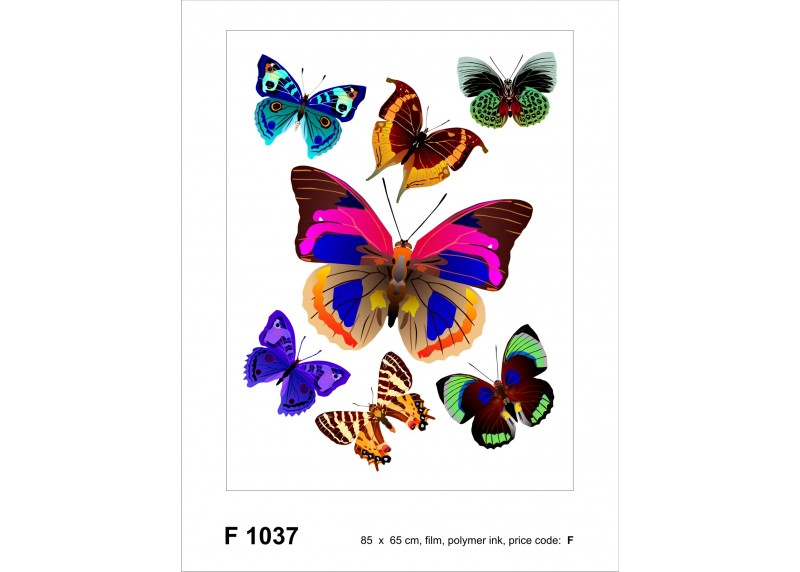 Samolepka na zeď,  AG Design, F 1037, Nádherné barevné motýly, 65x85 cm