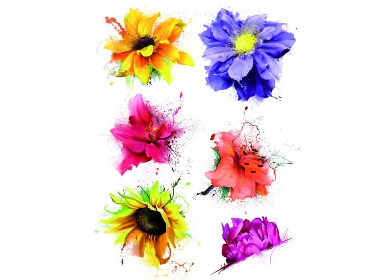 Samolepka na zeď,  AG Design, F 1058, Malované barevné květiny, 65x85 cm