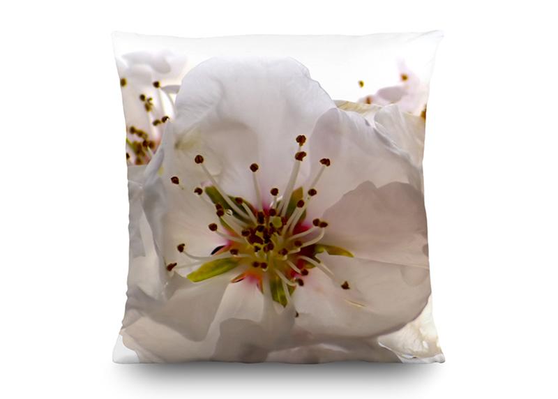 Třešňové květy, dekorativní polštář AG Design, 45 x 45 cm, do obývacího pokoje, kuchyně, ložnice či chaty, CN 3606